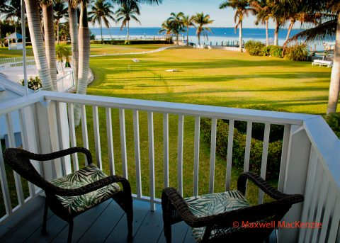View from room 4 balcony looking outward toward a luscious green lawn lined with beautiful palm trees and met by gulf water in the distance