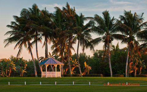 tarpon-lodge-grounds-2