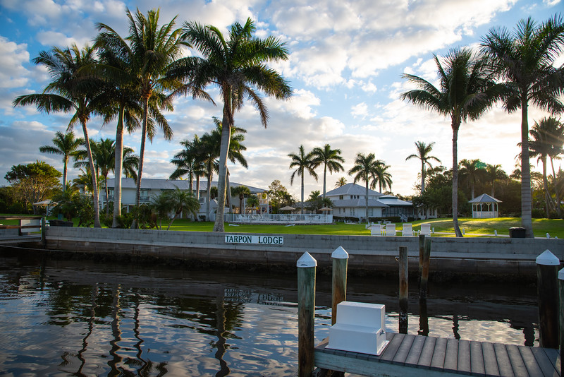 waterfront property with palm trees